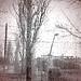 Llueve, detrás de los cristales, llueve y llueve sobre los chopos medio deshojados, sobre los pardos tejados, sobre los campos, llueve. by Felipe Sérvulo