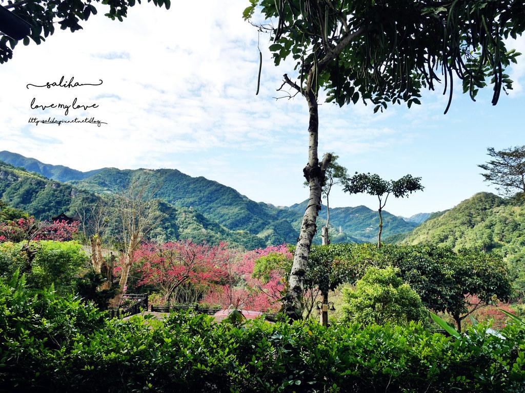 三峽一日遊景觀餐廳推薦花岩山林 (18)