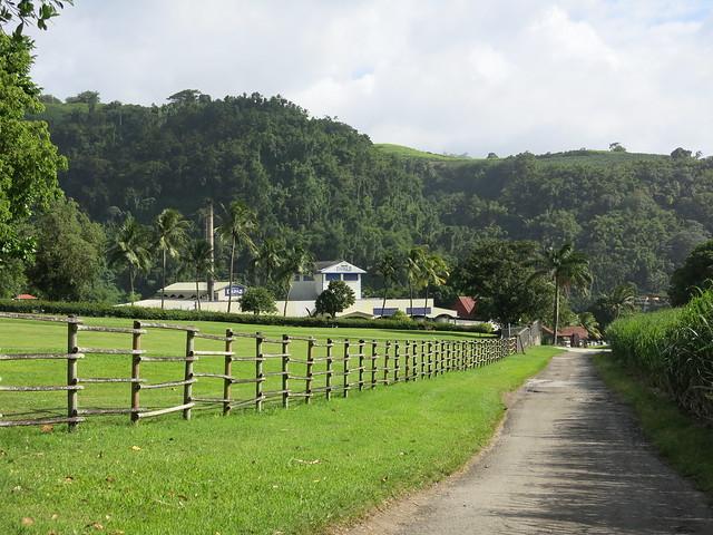 Atlantic crossing and Martinique 073