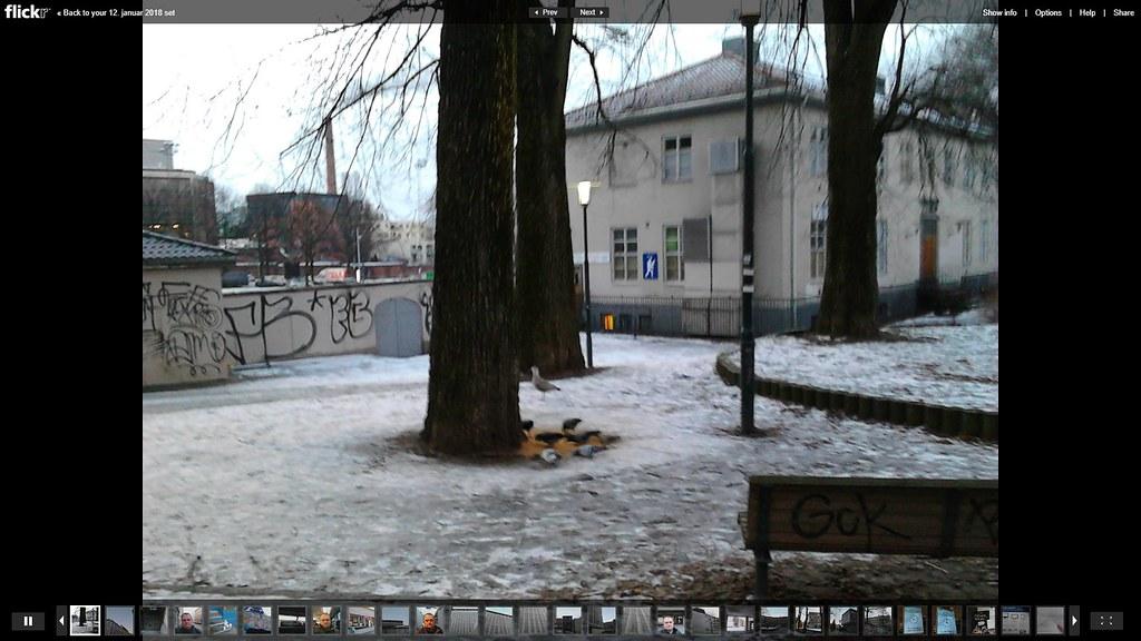 12. januar mobilbilder album slideshow