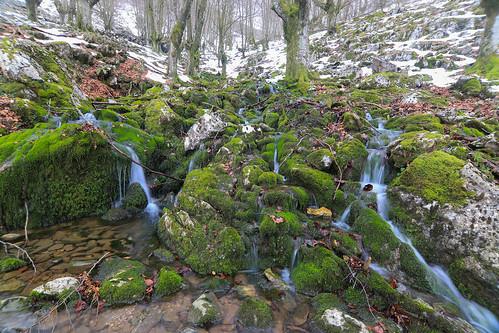 Parque Natural de Gorbeia #DePaseoConLarri #Flickr -60