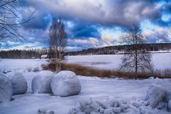Järvenkylänjärvi Lake, Central Finland