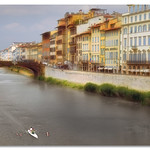 Florence bridge and rowers - by John Runions