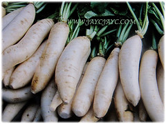 Raphanus sativus (Chinese/Japanese White Radish, Oriental/Cultivated Radish, Giant White Radish, Daikon, Lobak Putih in Malay) for sale at a supermarket in Kuala Lumpur, 25 Jan 2017