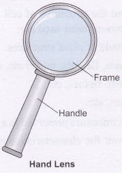 ncert-class-10-science-lab-manual-introduction-15