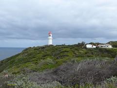 Cape Schanck Lighthouse (1) 作者 margaretpaul