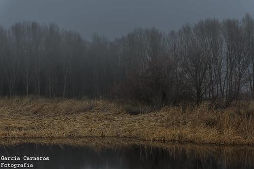 niebla en una fria mañana de invierno