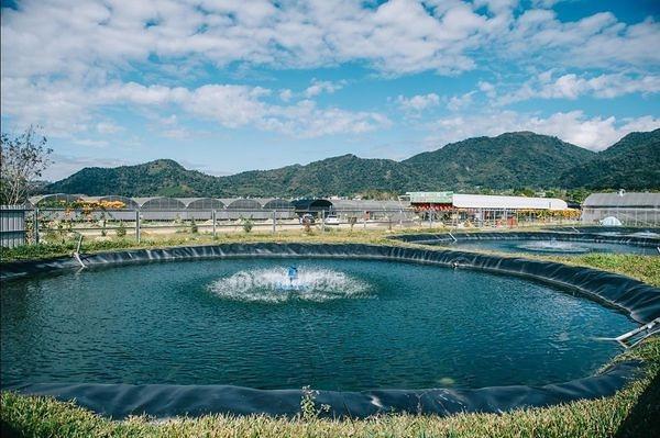 【埔里親子景點推薦】有吃有玩一個地方搞定,有山有水超自然開心農場@可麗開心農場
