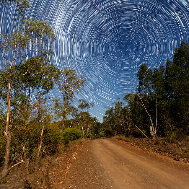 Mount Arthur Star Trail