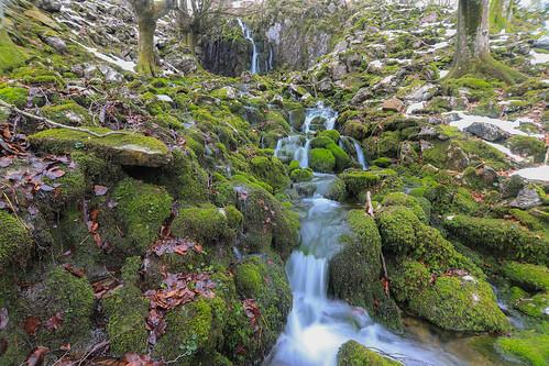 Parque Natural de Gorbeia #DePaseoConLarri #Flickr -70