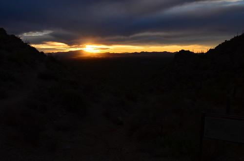 Desert Museum sunset