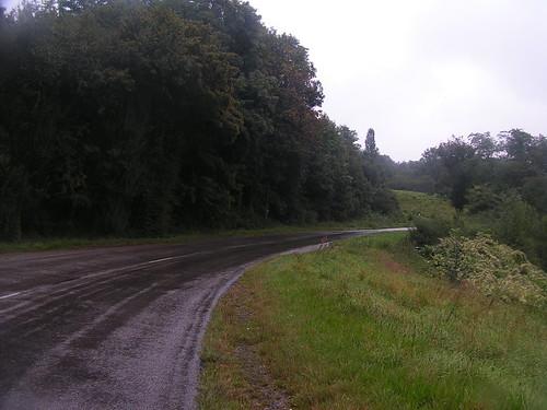 20070829 11296 0705 Jakobus Regen Straße Bäume