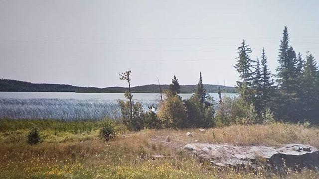 Rouse Lake. #ridingthroughwalls #xcanadabikeride #googlestreetview #ontario