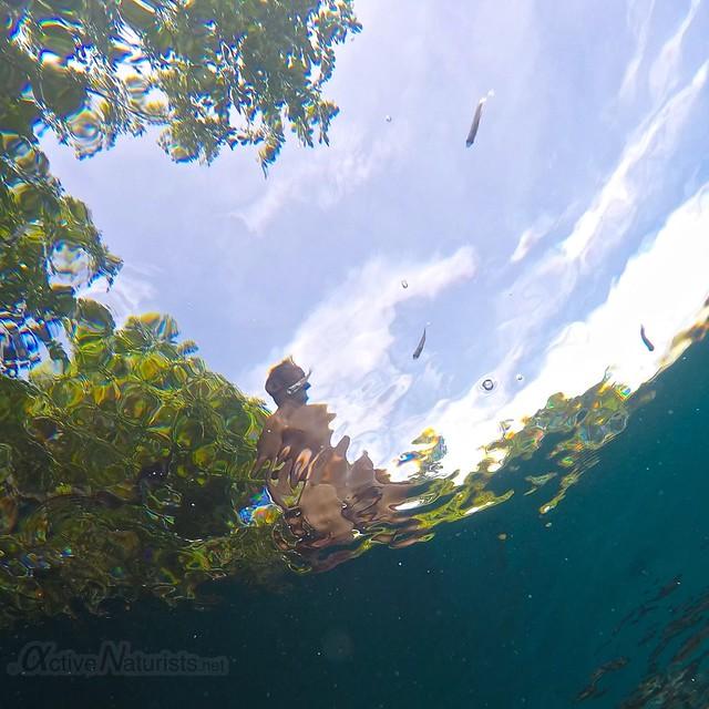 naturist underwater 0007 Cenote Azul, Chetumal, Quintana-Roo, Mexico
