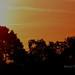 1 Calke sunrise