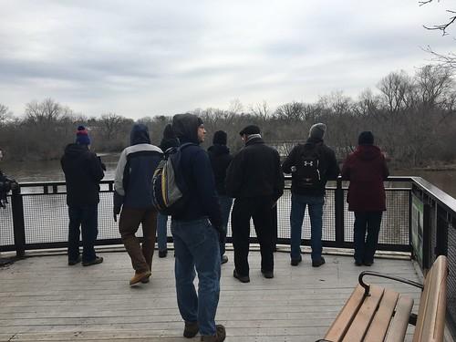 Fox River Birding