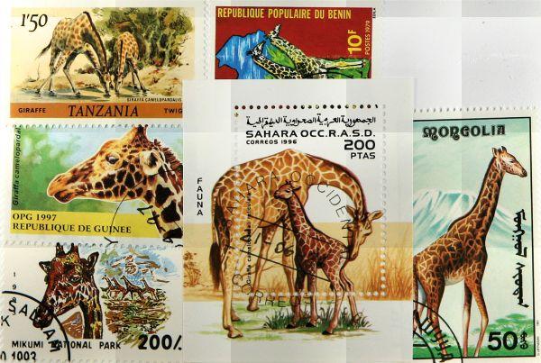 Známky Žirafy, 1 hárček a 5 rôznych známok