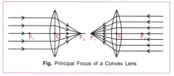 cbse-class-10-science-practical-skills-focal-length-of-concave-mirror-and-convex-lens-18