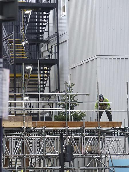 un sapin sur le chantier
