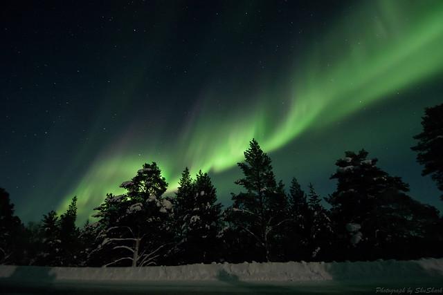 20180222-Finland-DSC_6479
