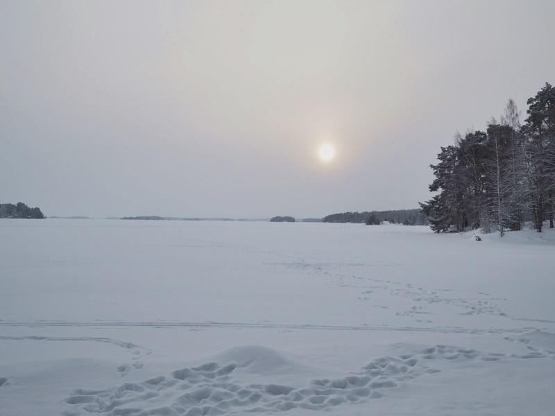 finland nature väinölänniemi kuopio talvi