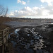 IW: River Itchen Cresswell Bay