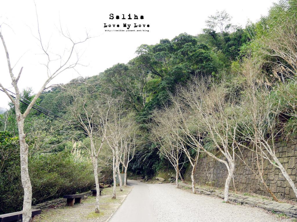 新北三峽一日遊踏青景點推薦滿月圓森林遊樂區 (6)