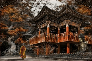 The Autumn Temple