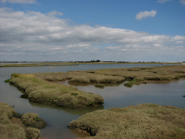 The coast near Kirby-le-Soken, Essex