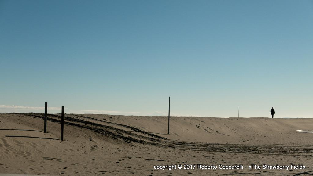 La duna di protezione invernale sulla spiaggia di Cesenatico