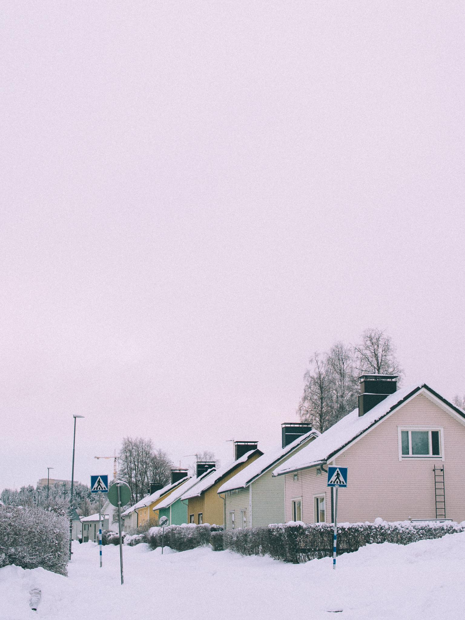 talvikni15