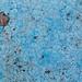 Week 02 - Blue
