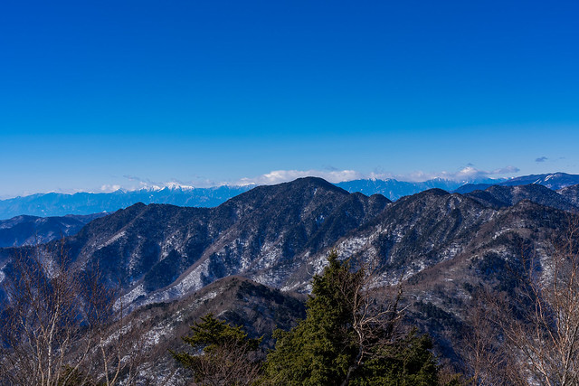 飛龍山の背後に南アルプス@雲取山頂