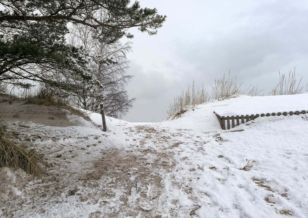 Yyteri sand dunes in winter