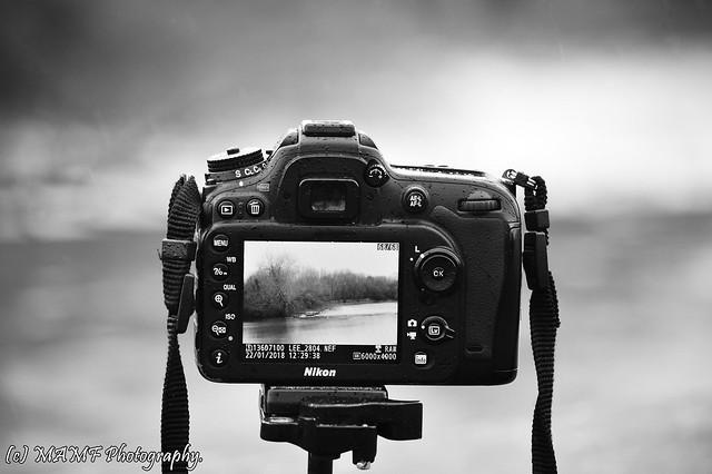 Life through a lens.