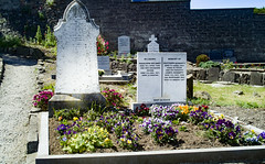 BACK IN JANUARY 2009 I VISITED THE OLD GRAVEYARD IN HOWTH [I HAD TO LEAVE BECAUSE I WAS ATTACKED BY GULLS]-135907
