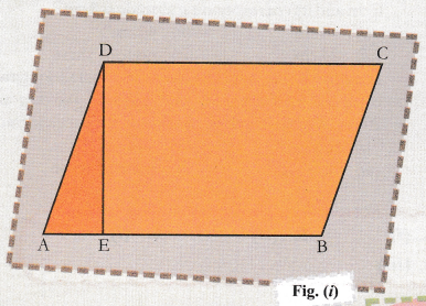 cbse-class-9-maths-lab-manual-area-of-a-parallelogram-1