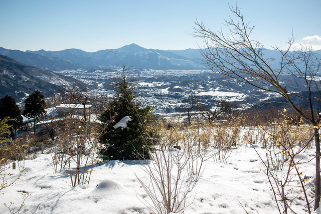20160124-宝登山-0353.jpg