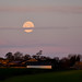 Super Moon, the morning after....