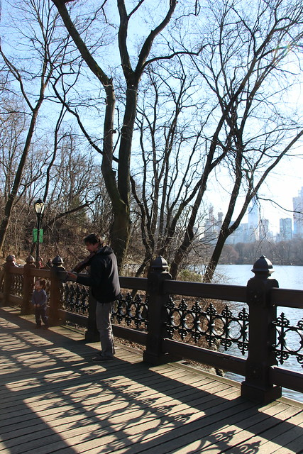 Central Park: Fiddler on the Bridge