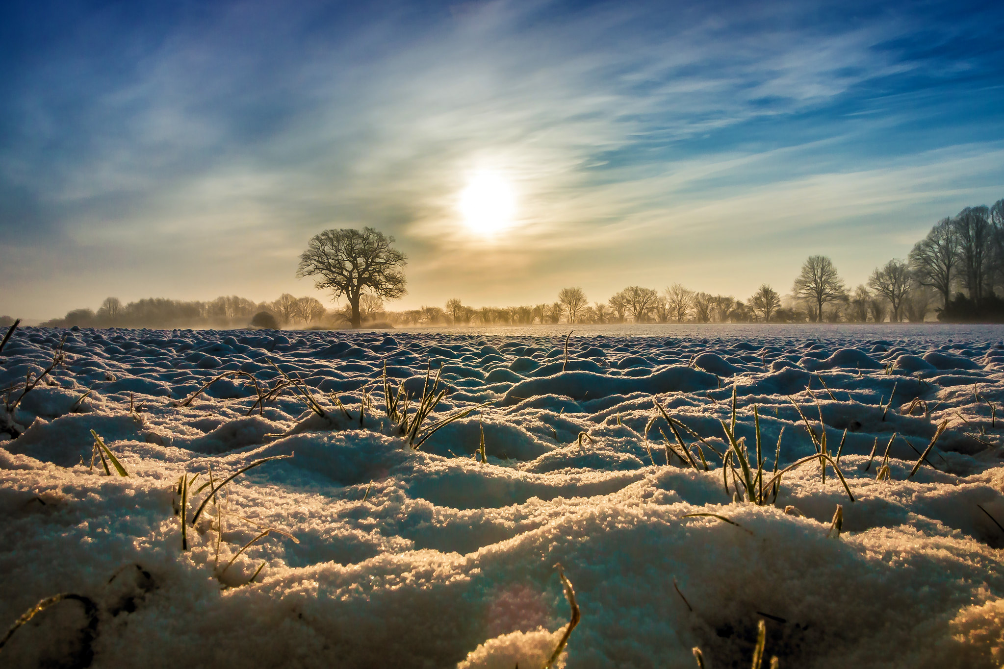 Wintermorgen in Pronstorf