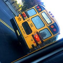 2005 Bluebird SBCV International 3300, DT466, Pioneer Transportation Corp, Bus#2362 (Former Varsity)