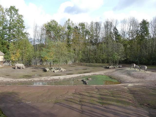 Anlage für Nashorn und Zebra