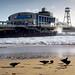IMG_1111 - Bournemouth Pier - Dorset - 17.01.18