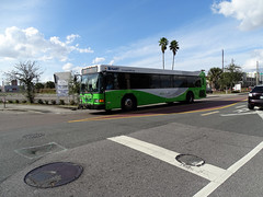 Tampa Bay (Hillsborough Area Regional Transit Authority) HART 1204 Gillig 40' Bus