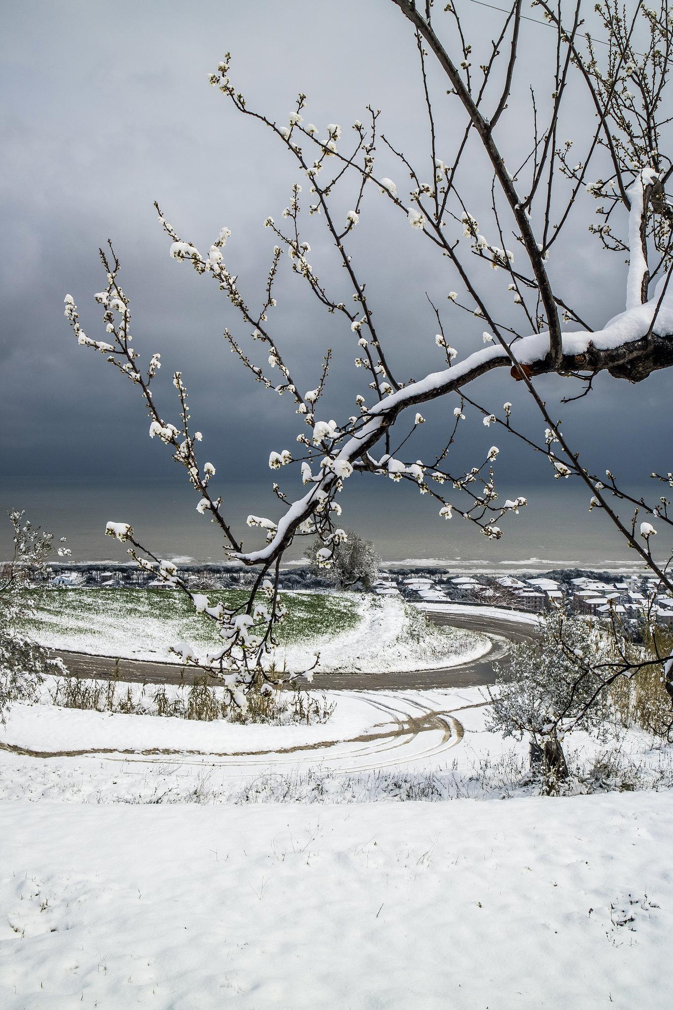 Pineto, neve 26 febbraio 2018