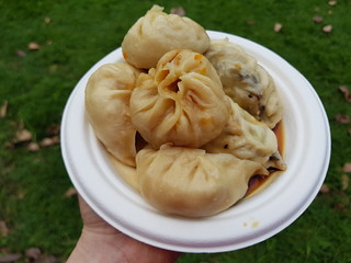 Momos (vegetable, mushroom, pumpkin) from Tibetan Momo Cafe at Vegucation Night Market