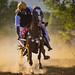 Dusty Rider