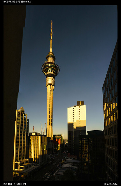 Auckland Skytower - Morning