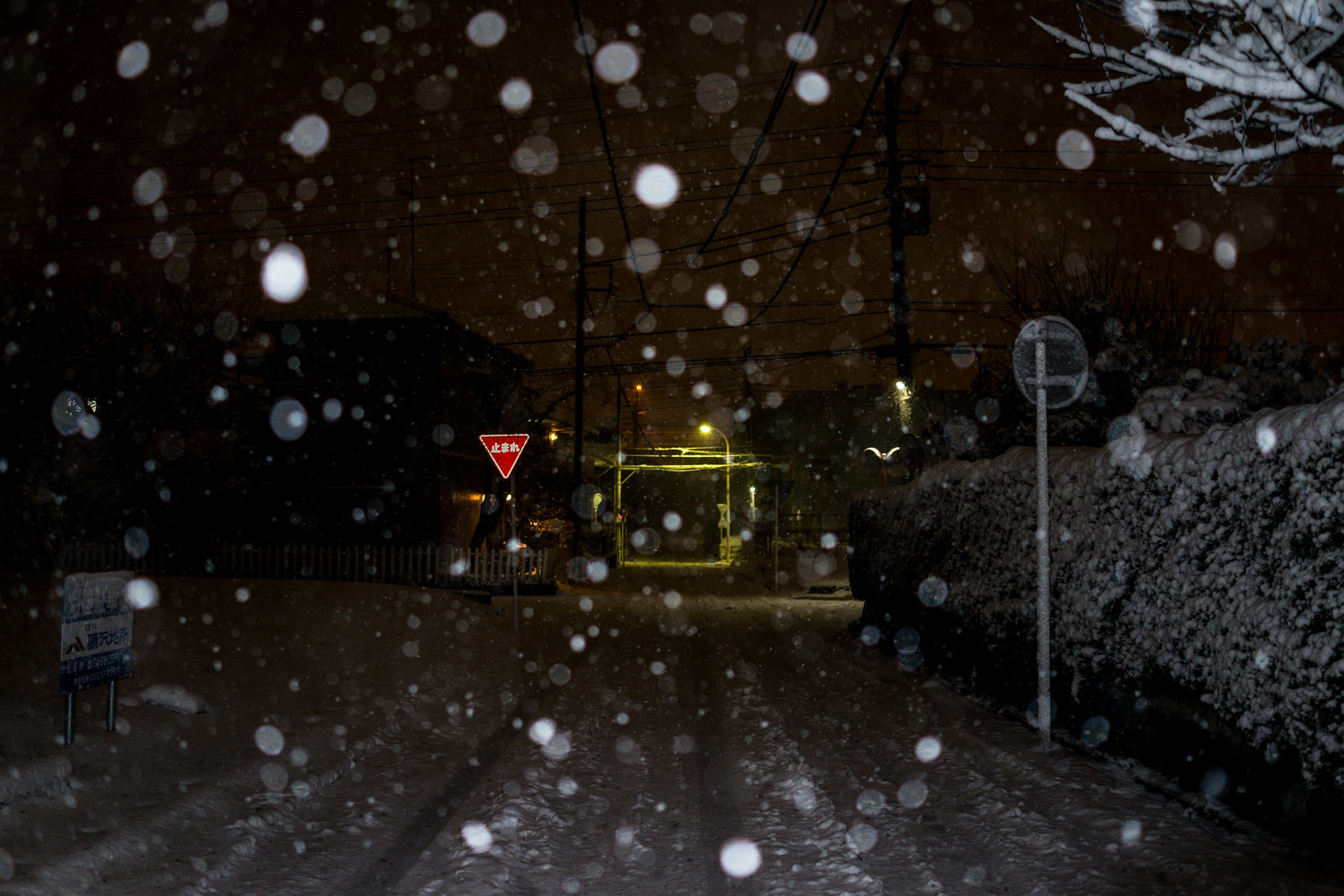 20180122 Snow_1